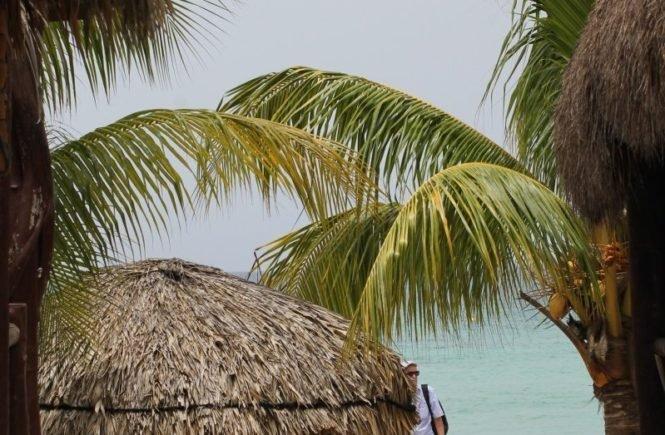 img 8108 665x435 - Nach Mexiko mit drei Kindern - die Reisevorbereitungen... -