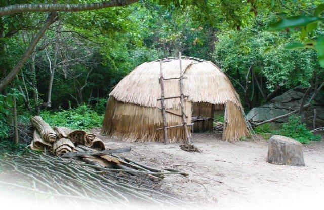wildi2 - Interview mit Line: Wir lebten mit unseren sieben Kindern ein Jahr in der Wildnis -