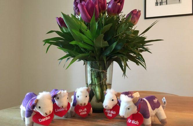 img 1466 665x435 - Endlich mal Danke sagen - mit den Lila Lieblingen und Schokoladenpaketen! Gewinnspiel und Kooperation mit Milka -