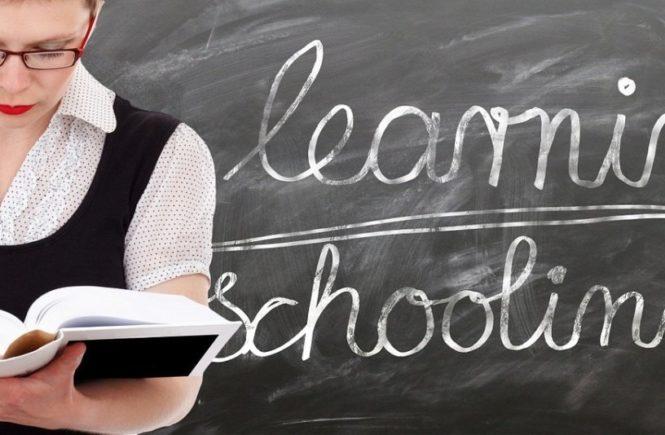 learn 1468406 1280 665x435 - Viele Eltern sehen ihr Kind als Projekt, das sie optimieren wollen - Ansichten einer Grundschullehrerin -