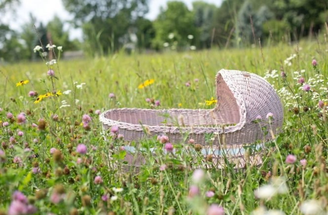baby bassinet 554082 1920 665x435 - Reportage: Wie Ulrike nach einer postpartalen Depression noch ein Kind bekam -