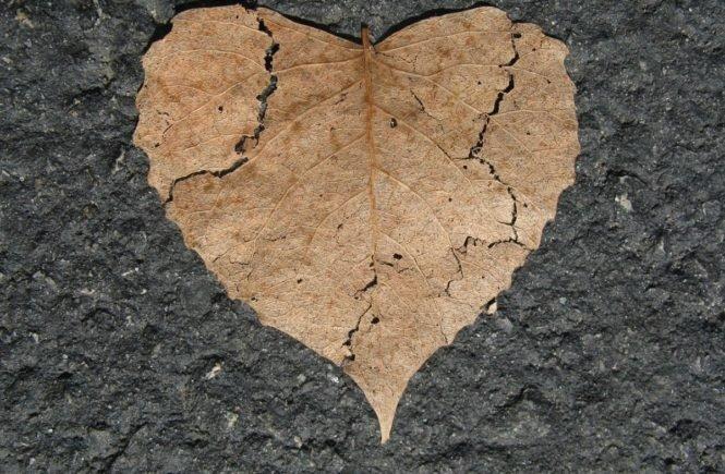 heart 742712 1280 0 665x435 - Gastbeitrag von Doris: Mein Mann hat mich betrogen - so kämpfen wir um unsere Ehe -
