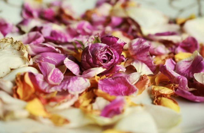 rose petals 2446716 1280 665x435 - Das Schlimmste am Fremdgehen waren die ganzen Lügen - Interview mit Tanja -