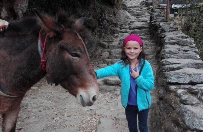 miriam mit esel 665x435 - Wie ich es geschafft habe, dass meine Tochter sich sozial engagiert - Gastbeitrag von Eva -
