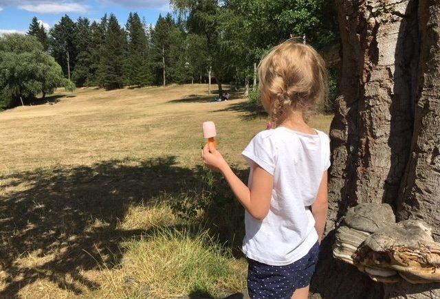 fruchtzwergeaufmacher 640x435 - Willkommen in den Ferien: Es sind die kleinen Dinge, die den Sommer so wundervoll machen -