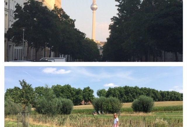 aufmacher 1 640x435 - Zwischen Berlin und Franken - Was bedeutet Heimat für mich? -
