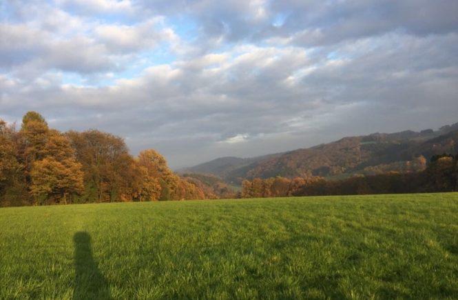 landschaft 665x435 - Bio ist nicht gleich bio, wenn es um Tierwohl und Klimaschutz geht! Warum wir wissen wollen, welche Wurst wir unseren Kindern aufs Brot legen – mit REWE Bio-Produkten -