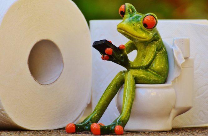 frog 1037251 1280 665x435 - Leserfrage: Warum braucht mein Sohn plötzlich wieder Hilfe beim Toilettengang -