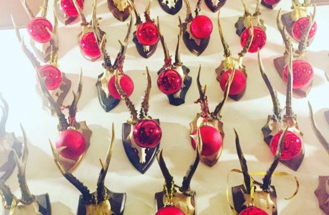 frohe weihnachten 665x435 - FROHE WEIHNACHTEN 2018 VON LISA UND KATHARINA -