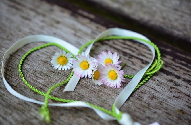 daisy 3392654 1280 665x435 - So viel Liebe! Unsere Leserinnen erzählen ihre Herzens-Story -