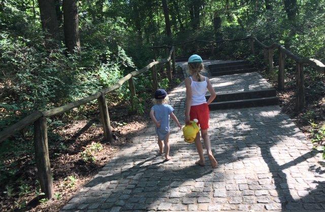 wald - Der Wald ist ein riesiger Spielplatz - unser TV-Tipp für abenteuerlustige Kids -