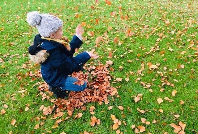 drop1 640x435 - Fit durch den Herbst - Warum Omega 3 so wichtig für unsere Kids ist. Mit Gewinnspiel! -