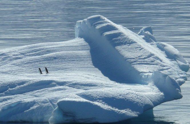 iceberg 329852 1280 665x435 - Klima-Wandel - wie erklärt Ihr Euren Kindern die düsteren Prognosen der Wissenschaft? -