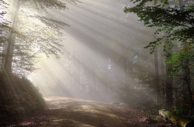 morning 1789903 1280 665x435 - Leserfrage: Wenn Vorfreude und Abschied nah bei einander liegen - wie gehe ich mit diesen Gefühlen um? -