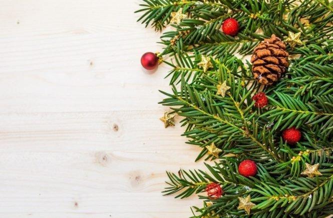 berry 1867135 1280 665x435 - Mein erstes Weihnachten als Alleinerziehende - wie Sandra die Feiertage verbringt -