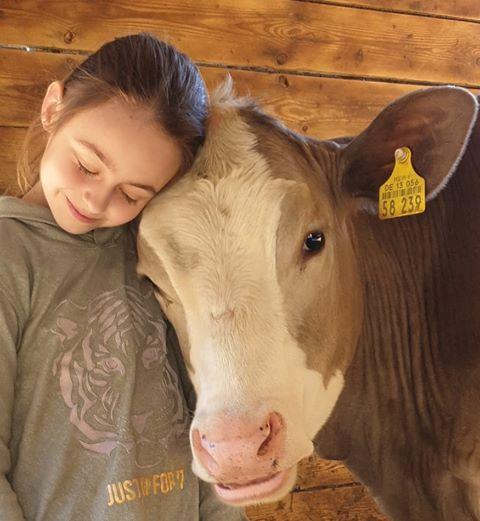 """Kuh5 - Kuh5 - Die zehnjährige Lena hat ein ganz besonderes """"Hobby"""" - nämlich eine Kuh."""
