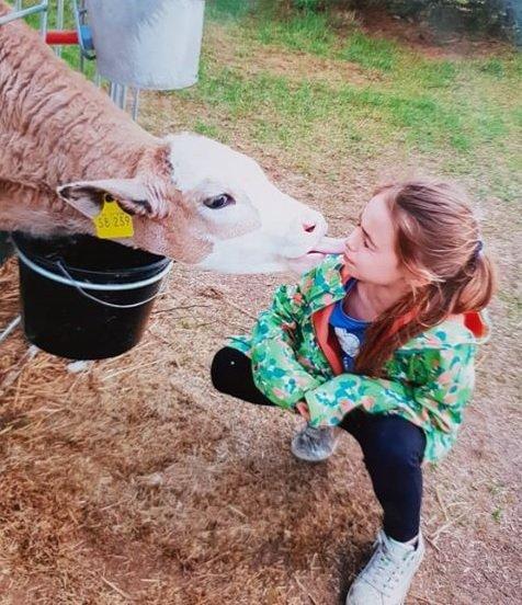 """Kuh8 - Kuh8 - Die zehnjährige Lena hat ein ganz besonderes """"Hobby"""" - nämlich eine Kuh."""