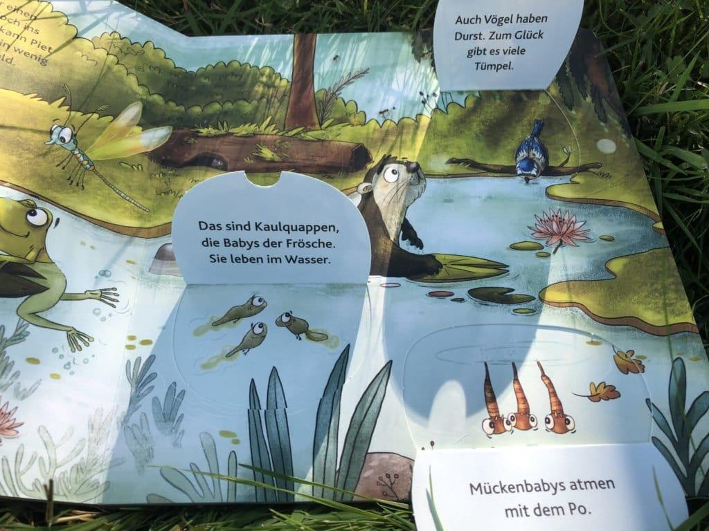 Piet2 1024x768 - Lieblings-Kinderbuch: Wie uns Carina und Peter Wohlleben von ihrem kleinen Eichhörnchen Piet überzeugten - Endlich wieder Vorlesen! Für Kinder ab zwei, deren Vorlesende auch gern nochmal über Mückenpopos schmunzeln wollen…